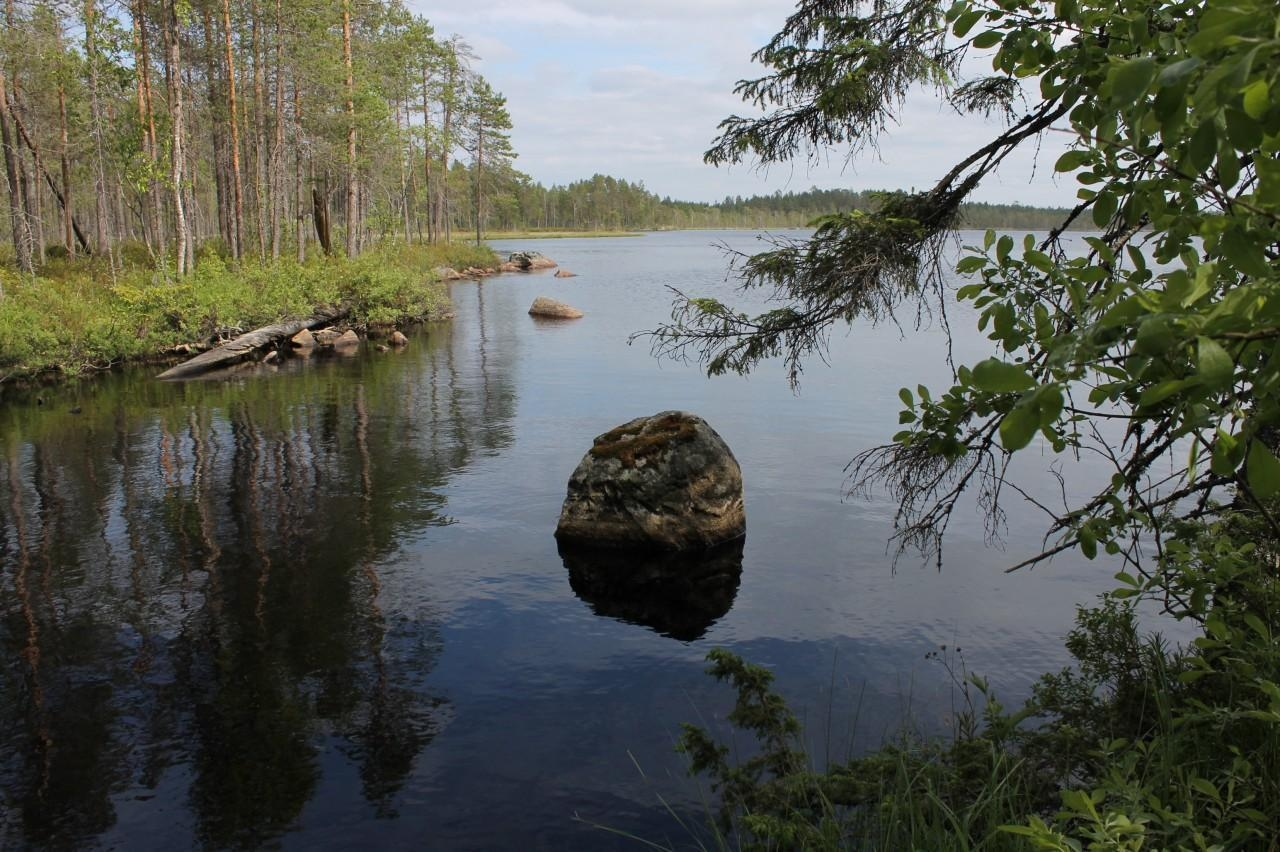 Peuran Polku Trail  for Parks and Wildlife Finland