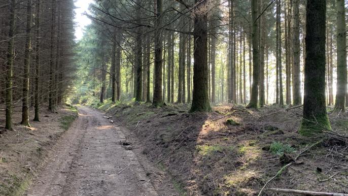 MTB Chèvetogne (B) - April 2020 for Transactief Mountainbike Adventours
