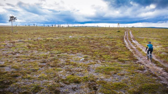 Arctic Grind Saariselkä for Ski Saariselkä