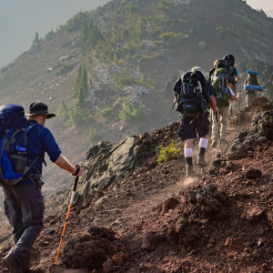 Hiking, Trekking & guided tours