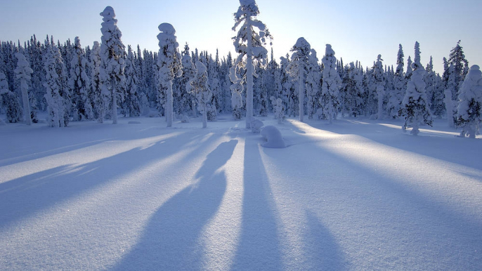 Equibliss Snow-n-Flow for Equibliss Horse Tours Finland