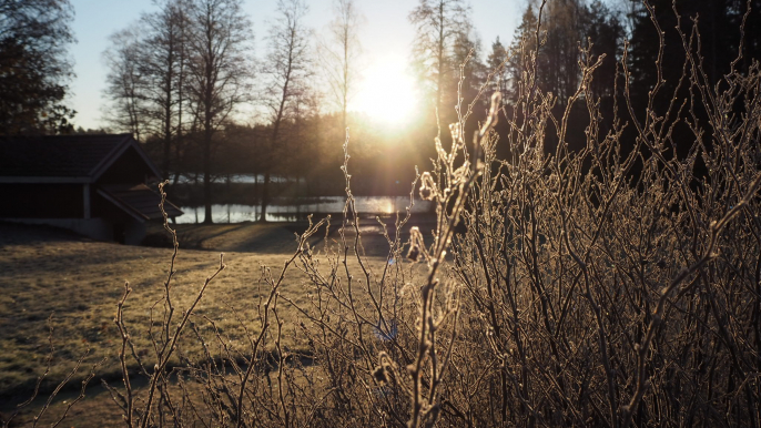 School camp in beautiful nature by the lake close to Helsinki  for Hotelli Nuuksio
