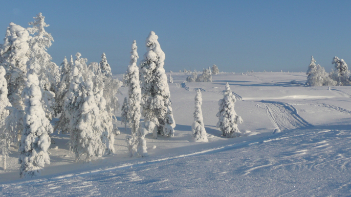 Further to the Wilderness for Lapland Welcome Ltd